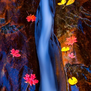 The Crack of Subway, Zion National Park