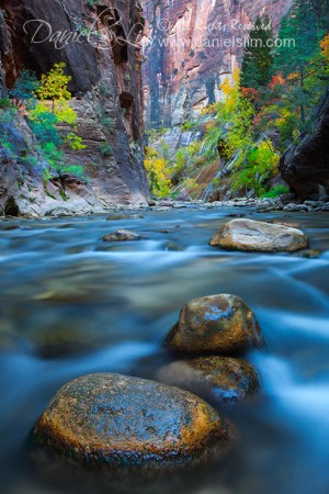 Entering the Virgin Narrows, Zion National Park